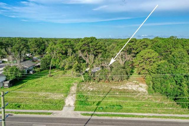 6552 W Gulf To Lake Highway, Crystal River, FL 34429 (MLS #T3318868) :: Zarghami Group