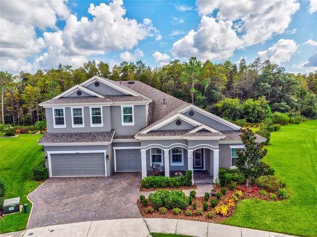 4080 Natural Vista Court, New Port Richey, FL 34655 (MLS #T3318885) :: Zarghami Group