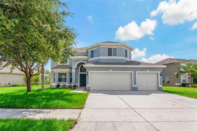 12917 Carlington Lane, Riverview, FL 33579 (MLS #T3319519) :: Zarghami Group