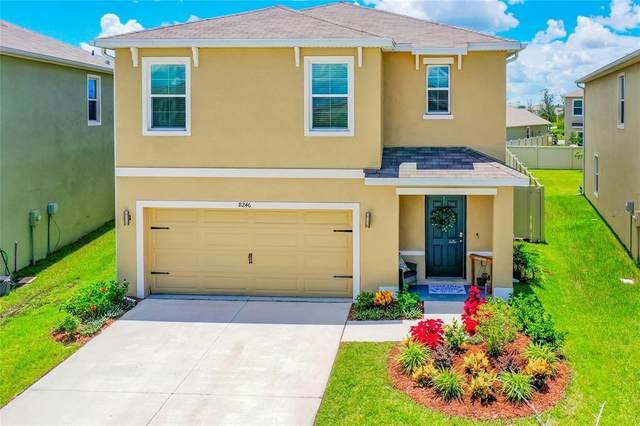 8246 Pelican Reed Circle, Wesley Chapel, FL 33545 (MLS #T3319718) :: Zarghami Group