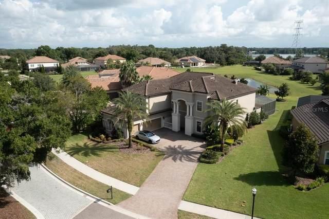9135 Tillinghast Drive, Tampa, FL 33626 (MLS #T3319746) :: Zarghami Group