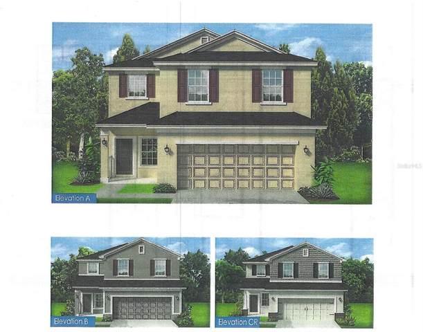 16121 61ST Lane E, Parrish, FL 34219 (MLS #T3319819) :: GO Realty