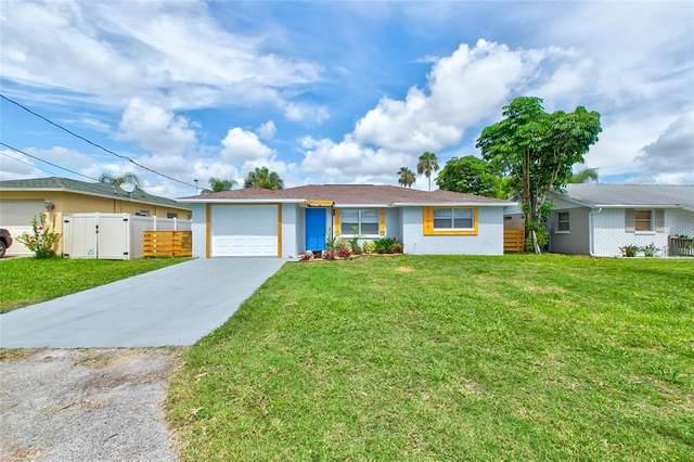 13738 Coco Avenue, Hudson, FL 34667 (MLS #T3319885) :: Premium Properties Real Estate Services