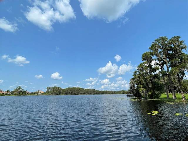 17117 Breeders Cup Drive, Odessa, FL 33556 (MLS #T3319966) :: Zarghami Group
