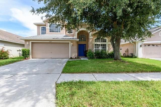12520 Sparkleberry Road, Tampa, FL 33626 (MLS #T3320108) :: Delgado Home Team at Keller Williams
