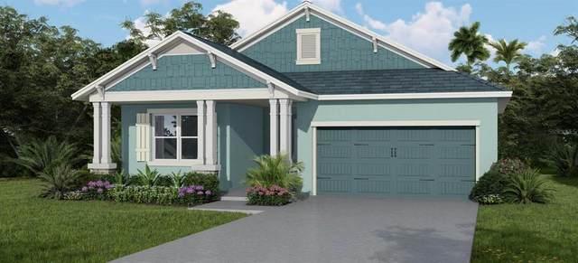 9004 Patton Court, Spring Hill, FL 34606 (MLS #T3320185) :: Zarghami Group