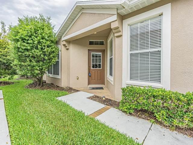 7547 Helen White Lane, Land O Lakes, FL 34637 (MLS #T3320338) :: Gate Arty & the Group - Keller Williams Realty Smart