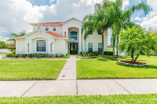 10222 Meadow Crossing Drive, Tampa, FL 33647 (MLS #T3321051) :: Delgado Home Team at Keller Williams