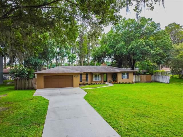 7210 Cypress Lake Drive, Odessa, FL 33556 (MLS #T3321540) :: Vacasa Real Estate