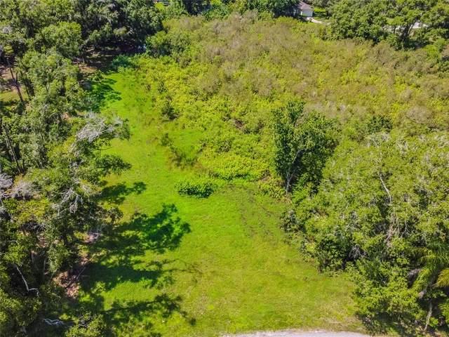 207 E Lutz Lake Fern, Lutz, FL 33549 (MLS #T3321559) :: Everlane Realty