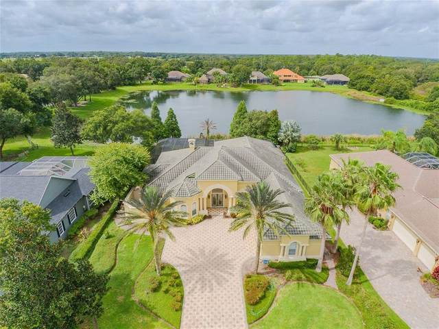 6217 Kingbird Manor Drive, Lithia, FL 33547 (MLS #T3321575) :: Frankenstein Home Team