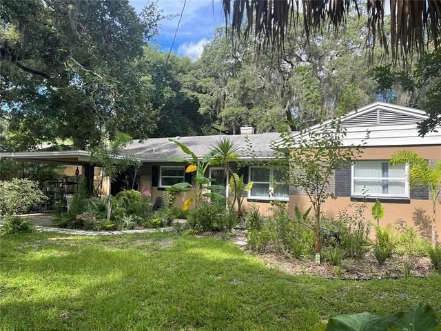 7201 Park Drive, New Port Richey, FL 34652 (MLS #T3323202) :: Zarghami Group