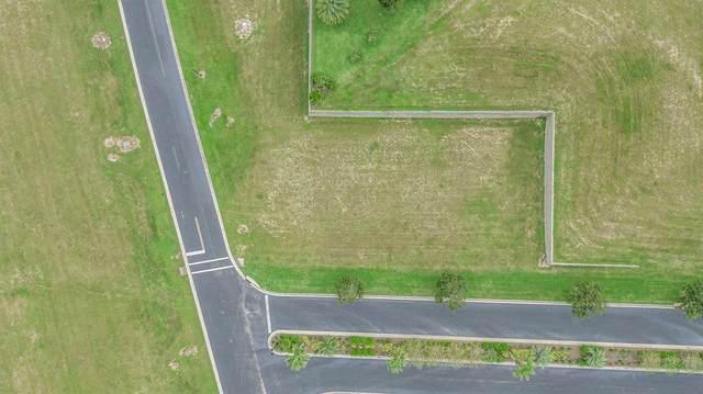 357 Caladium Avenue, Lake Alfred, FL 33850 (MLS #T3325475) :: Vacasa Real Estate