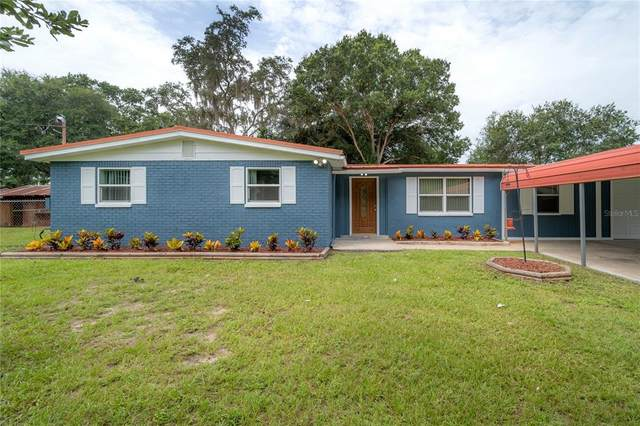 18526 30TH Street, Lutz, FL 33559 (MLS #T3326073) :: Zarghami Group