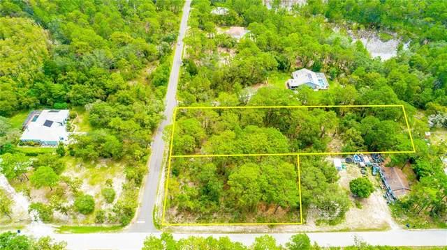 9064 Michigan Avenue, Weeki Wachee, FL 34613 (MLS #T3326180) :: Premium Properties Real Estate Services