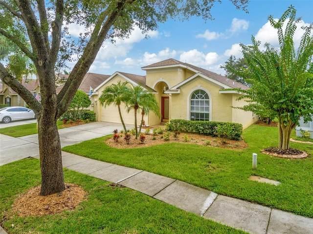 18821 Maisons Drive, Lutz, FL 33558 (MLS #T3326578) :: Zarghami Group