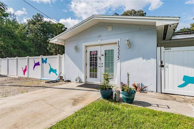 13335 County Line Road, Spring Hill, FL 34609 (MLS #T3327084) :: Everlane Realty
