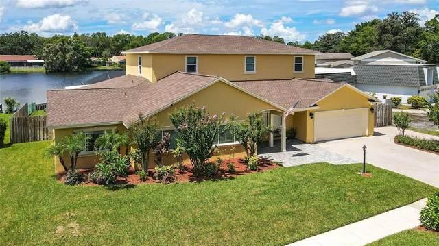 11606 Lipsey Road, Tampa, FL 33618 (MLS #T3327229) :: Cartwright Realty