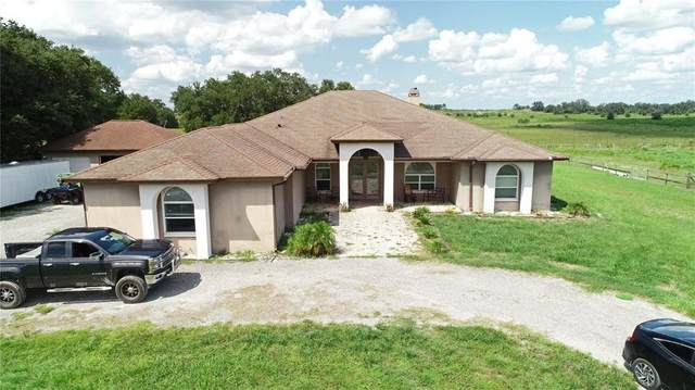 15818 Mahoney Drive, Spring Hill, FL 34610 (MLS #T3327381) :: Zarghami Group
