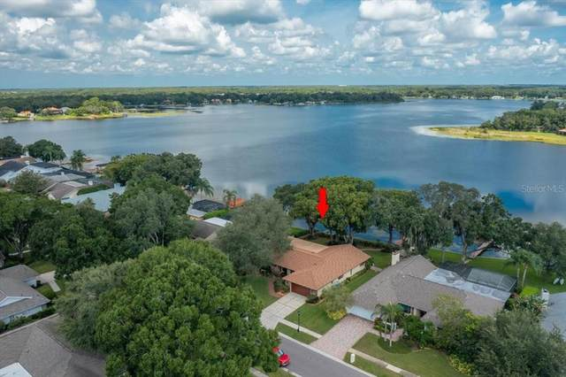 14008 Shady Shores Drive, Tampa, FL 33613 (MLS #T3327428) :: Zarghami Group