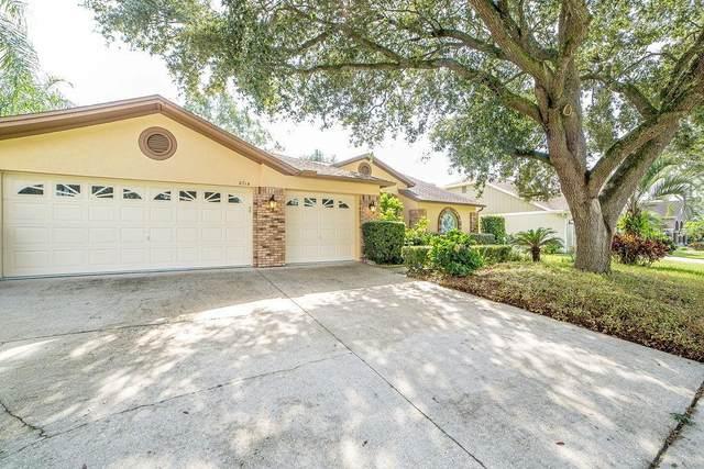 2714 Crestfield Drive, Valrico, FL 33596 (MLS #T3327828) :: Team Bohannon