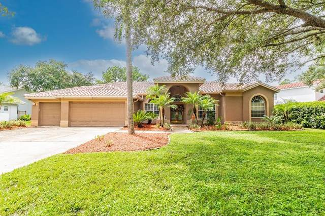 1516 E Lake Woodlands Parkway, Oldsmar, FL 34677 (MLS #T3328117) :: Zarghami Group