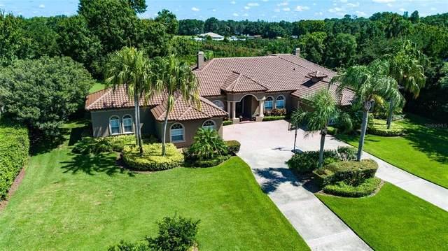 7907 Foxcatcher Court, Odessa, FL 33556 (MLS #T3328550) :: Vacasa Real Estate
