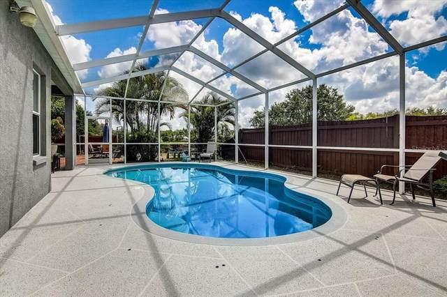 7717 Bristol Park Drive, Apollo Beach, FL 33572 (MLS #T3328666) :: Zarghami Group