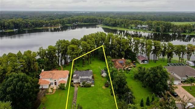 307 Lake Hobbs Road, Lutz, FL 33548 (MLS #T3328854) :: Zarghami Group