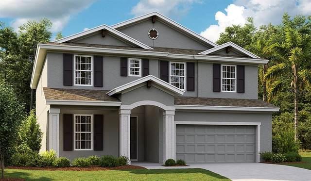 4607 Emprise Way, Land O Lakes, FL 34638 (MLS #T3329231) :: Charles Rutenberg Realty