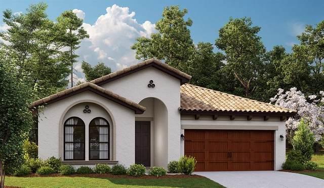 4024 Burdick Loop, Odessa, FL 33556 (MLS #T3329450) :: The Nathan Bangs Group