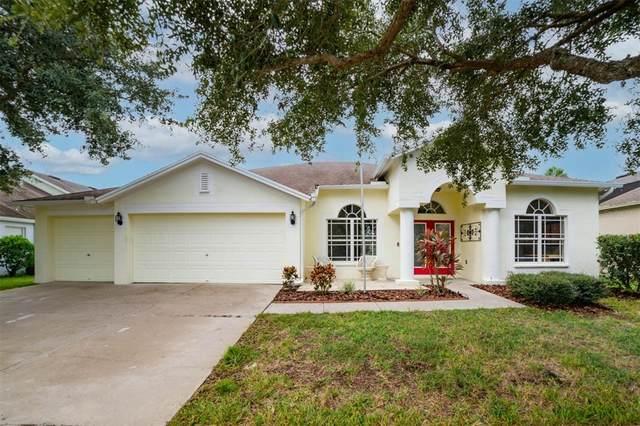 16141 Bridgedale Drive, Lithia, FL 33547 (MLS #T3330214) :: Cartwright Realty