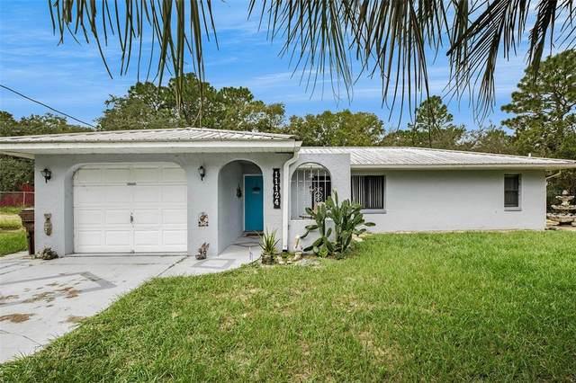 11124 N Sonnet Terrace, Citrus Springs, FL 34433 (MLS #T3330297) :: RE/MAX Elite Realty