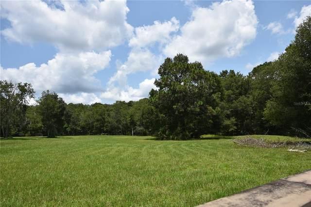 Regal Oaks, Lutz, FL 33559 (MLS #T3330439) :: Future Home Realty