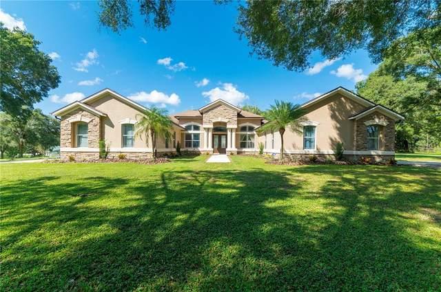 11909 Windsorwood Boulevard, Dade City, FL 33525 (MLS #T3330917) :: Everlane Realty