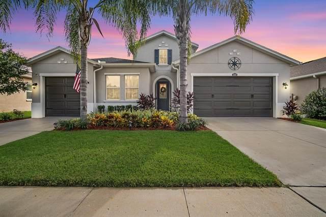 32314 Firemoss Lane, Wesley Chapel, FL 33543 (MLS #T3331566) :: Future Home Realty