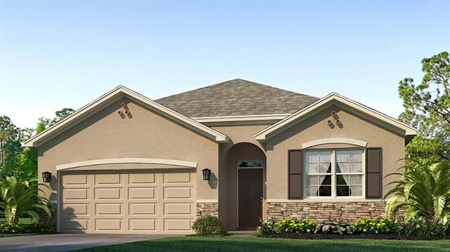17234 Reserva Drive, Bradenton, FL 34211 (MLS #T3331653) :: SunCoast Home Experts
