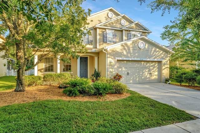 7232 Bridgeview Drive, Wesley Chapel, FL 33545 (MLS #T3332146) :: Cartwright Realty