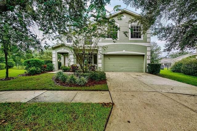 15304 Palomapark Lane, Lithia, FL 33547 (MLS #T3332350) :: Everlane Realty