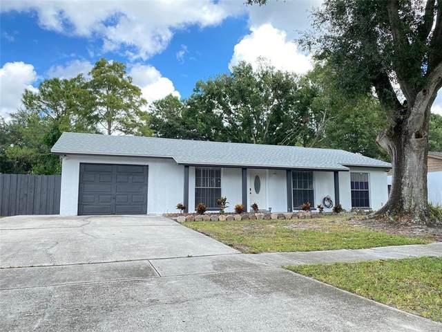 6563 Spanish Moss Circle, Tampa, FL 33625 (MLS #T3333805) :: Keller Williams Realty Select
