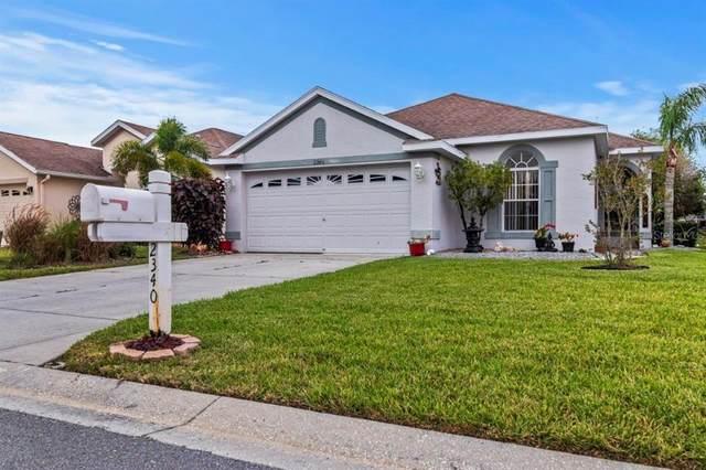 2340 Pleasant Hill Lane, Holiday, FL 34691 (MLS #T3333974) :: Charles Rutenberg Realty