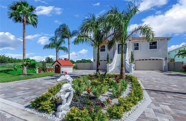 3138 Phoenix Avenue, Oldsmar, FL 34677 (MLS #T3334341) :: RE/MAX Marketing Specialists