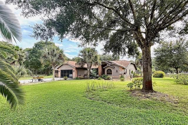 11302 W Gilia Lane, Crystal River, FL 34428 (MLS #T3334371) :: Everlane Realty