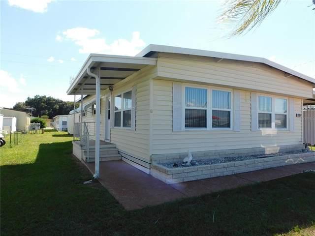 37024 8TH Avenue, Zephyrhills, FL 33542 (MLS #T3334541) :: Premium Properties Real Estate Services