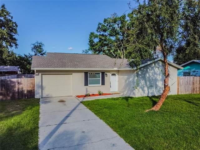 14123 Arbor Hills Road, Tampa, FL 33625 (MLS #T3334826) :: Cartwright Realty