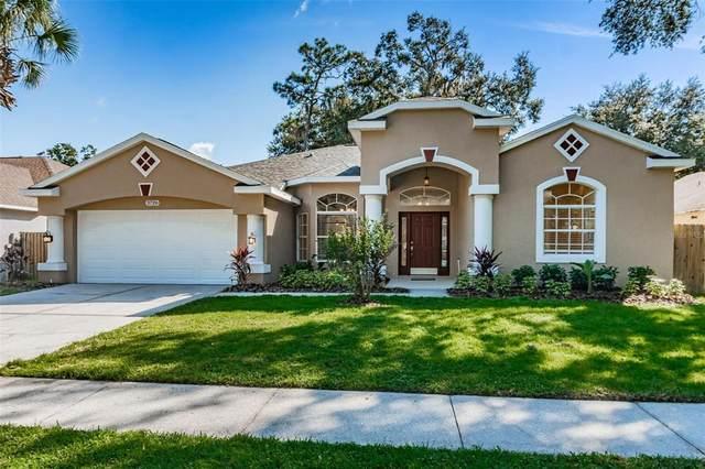 3726 Cold Creek Drive, Valrico, FL 33596 (MLS #T3335558) :: Team Bohannon
