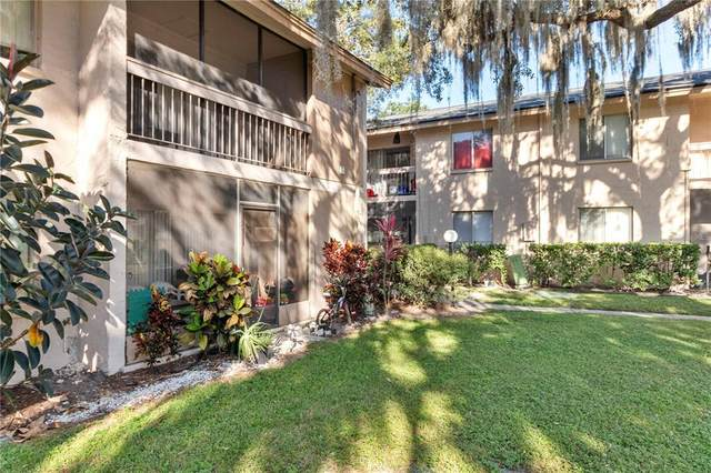 5501 Loblolly Court 163B, Tampa, FL 33617 (MLS #T3335578) :: Florida Real Estate Sellers at Keller Williams Realty