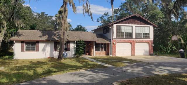 11640 Minnieola Drive, NEW PT RICHEY, FL 34654 (MLS #T3335621) :: Your Florida House Team