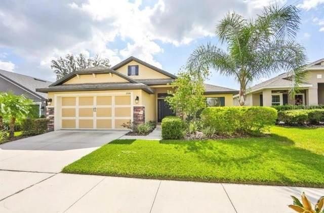 12006 Legacy Bright Street, Riverview, FL 33578 (MLS #T3335672) :: Team Bohannon