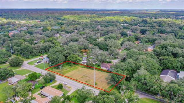Livingston Avenue, Lutz, FL 33559 (MLS #T3336015) :: Future Home Realty